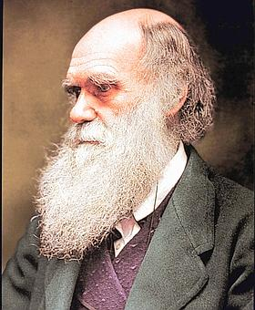 Retrato de Charles Darwin / ABC