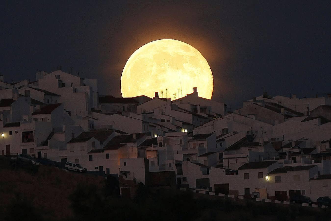En Olvera, Cádiz