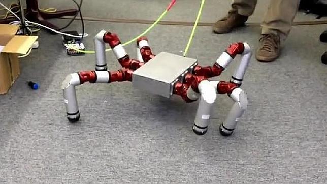 El robot araña ya es una realidad