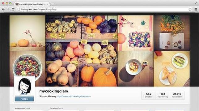 Instagram llega a internet