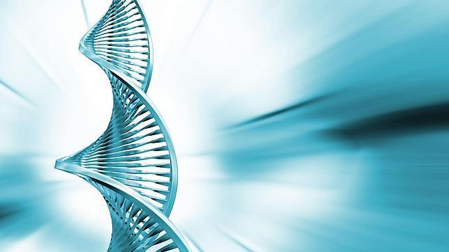 Google ofrece su «nube» para encontrar el origen genético del autismo