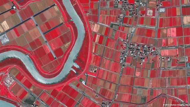 Los nuevos satélites de Google quieren cambiar al mundo