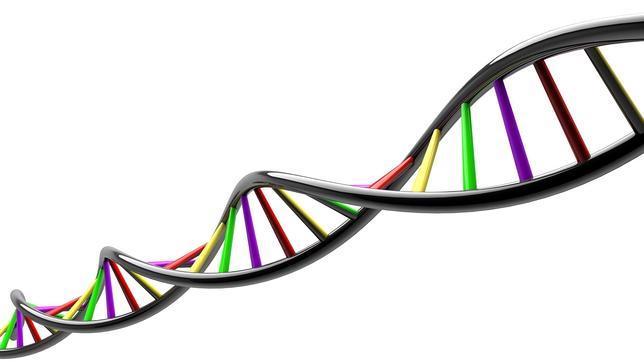Google crea una plataforma «on line» que almacena el genoma de miles de personas para investigar enfermedades