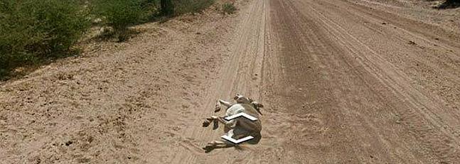 Google se cruza con los burros de Botsuana