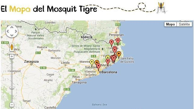 Atrapa el mosquito Tigre con la app «Tigatrapp»