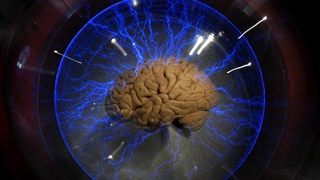 Crean un «cerebro» artificial capaz jugar títulos de Atari