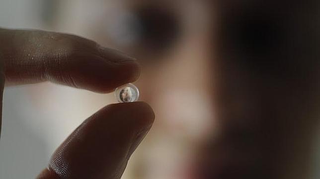 Un pequeño lente convierte tu «smartphone» en un «microscopio»
