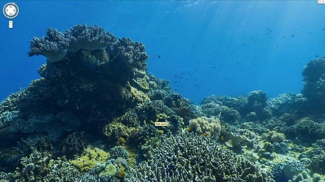 Descubre el fondo del mar a través de Google Maps