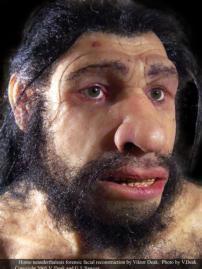 Resultado de imagen para rostro de hombre neardental