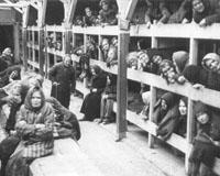 prostitutas nazis prostitutas en cornella